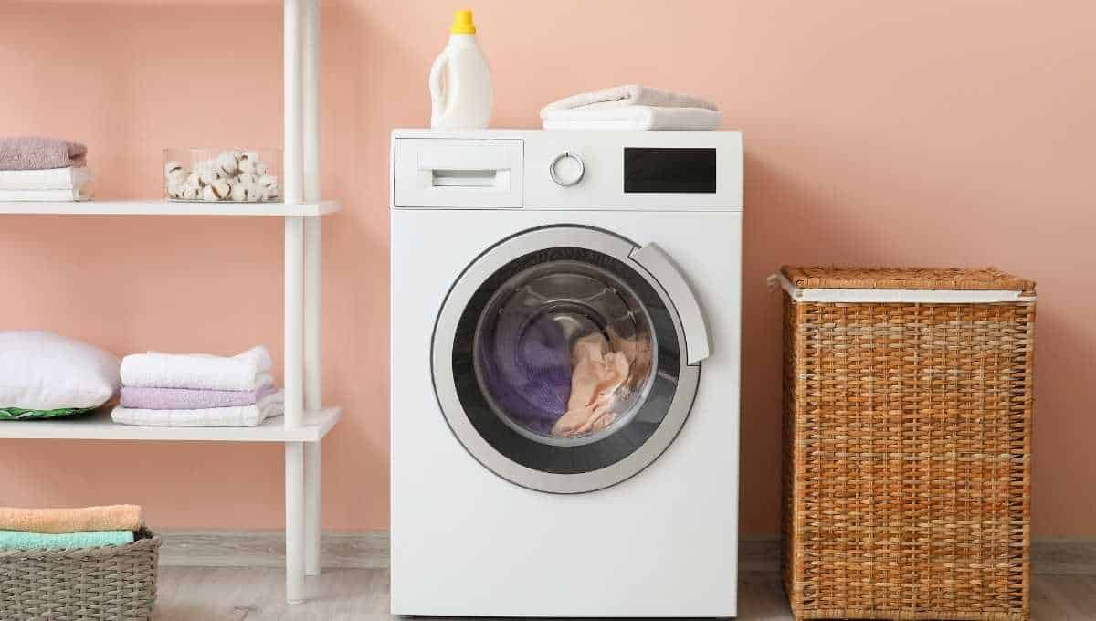 Can You Put a Carpet in the Dryer?